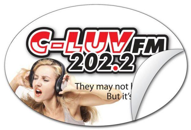 Oval Sticker / Decal - Vinyl UV Coated - 4x6-900