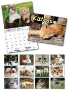 13 Month Custom Appointment Wall Calendar - KITTENS-0