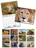 13 Month Custom Appointment Wall Calendar - SAFARI-0
